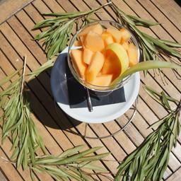 Bowl di Melone