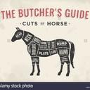 Panino e Hamburger di Cavallo